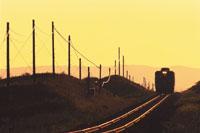 黄昏の原生花園を行く普通列車