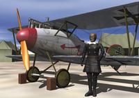 アルバトロスDV CG 28144096024  写真素材・ストックフォト・画像・イラスト素材 アマナイメージズ