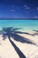 モルジブのビーチ
