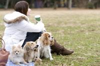 芝生でリラックスする犬と女性 28174001668| 写真素材・ストックフォト・画像・イラスト素材|アマナイメージズ