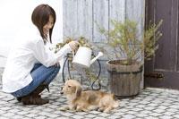 水遣りをする女性と犬