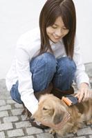 犬の毛並みを整える女性