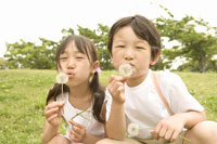 綿毛を吹く子供たち 28174006225| 写真素材・ストックフォト・画像・イラスト素材|アマナイメージズ