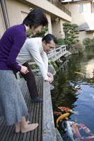 鯉を眺める夫婦