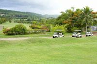ゴルフコースとカート 28174007358| 写真素材・ストックフォト・画像・イラスト素材|アマナイメージズ
