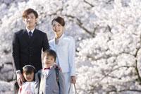 桜とファミリー