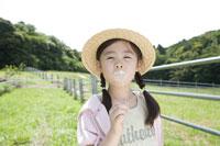 タンポポの綿毛を吹く女の子 28174008922| 写真素材・ストックフォト・画像・イラスト素材|アマナイメージズ
