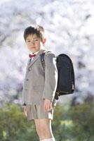 ランドセルを背負う新入学の男の子