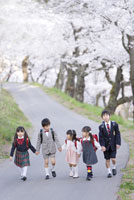 桜並木を歩く五人の小学生