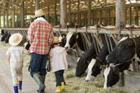 牛舎の牛を見ている親子の後姿