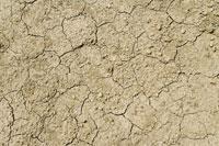 ひび割れた土の地面