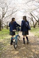 桜と女子高生 28177002498| 写真素材・ストックフォト・画像・イラスト素材|アマナイメージズ