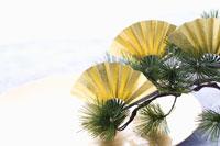 金の扇子と松 正月イメージ