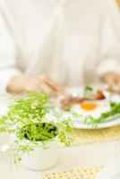 チャービルのある食卓で朝食をとる女性