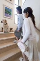 階段を上る女性と犬