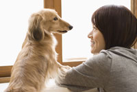 見つめあう女性と犬