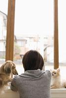 窓辺の女性と犬