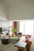 観葉植物の置いてある部屋