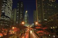 新宿副都心ビル群の夜景