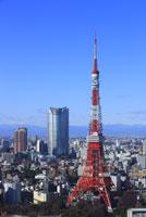 東京タワーと六本木の高層ビル 29000000711| 写真素材・ストックフォト・画像・イラスト素材|アマナイメージズ