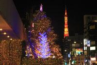クリスマスイルミネーションと東京タワーの夜景 29000000738| 写真素材・ストックフォト・画像・イラスト素材|アマナイメージズ