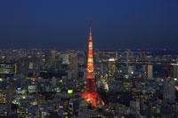 六本木から東京タワーの夕景