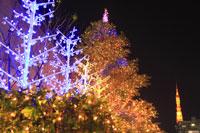 浜松町のクリスマスイルミネーション 29000000862| 写真素材・ストックフォト・画像・イラスト素材|アマナイメージズ