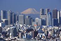 新宿ビル群と富士山
