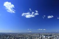 新宿方面の街並みと富士山