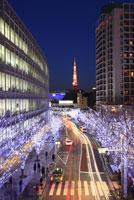 六本木のクリスマスイルミネーション 29000000992| 写真素材・ストックフォト・画像・イラスト素材|アマナイメージズ