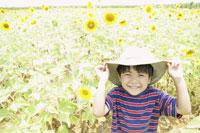ヒマワリ畑と男の子