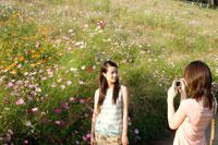 コスモス畑で写真を撮る2人の20代日本人女性