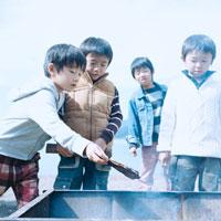 湖畔でBBQ用グリルに薪を入れる4人の男の子