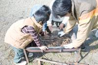 BBQ用グリルに枝を敷く成人男性と3人の男の子