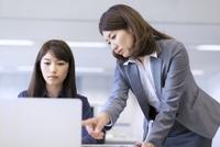 オフィスで打ち合せをするビジネス女性2人