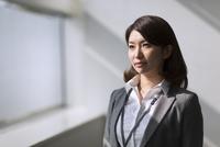 ビジネス女性のポートレート