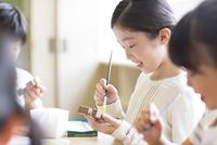 絵具の筆で色を塗る女の子の横顔