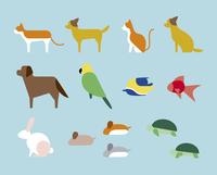 ペット用の動物