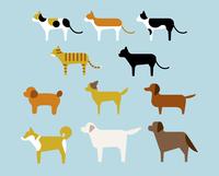 犬と猫の種類