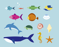 いろいろな鑑賞魚