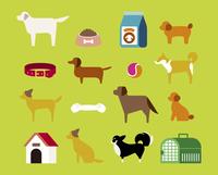 犬とペット用品 60000000021| 写真素材・ストックフォト・画像・イラスト素材|アマナイメージズ