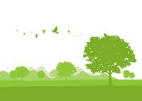 新緑 60003000038| 写真素材・ストックフォト・画像・イラスト素材|アマナイメージズ