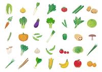 野菜 60003000046  写真素材・ストックフォト・画像・イラスト素材 アマナイメージズ