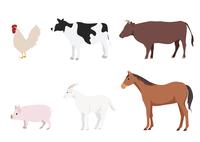 家畜 60003000068| 写真素材・ストックフォト・画像・イラスト素材|アマナイメージズ