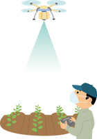 ドローンを使っての農薬散布 60008000441| 写真素材・ストックフォト・画像・イラスト素材|アマナイメージズ