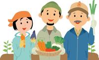様々な野菜を生産する小規模農園 60008000459| 写真素材・ストックフォト・画像・イラスト素材|アマナイメージズ