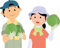農業就労した若者が野菜を生産 60008000473| 写真素材・ストックフォト・画像・イラスト素材|アマナイメージズ