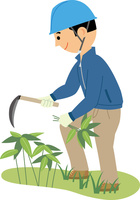 下草を刈って里山の手入れをする男性 60008000477| 写真素材・ストックフォト・画像・イラスト素材|アマナイメージズ