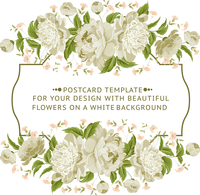 Invitation card with white flowers. Vector illustration.