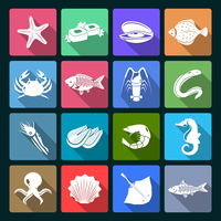 Seafood icons white set with shellfish crab squid oyster isolated vector illustration